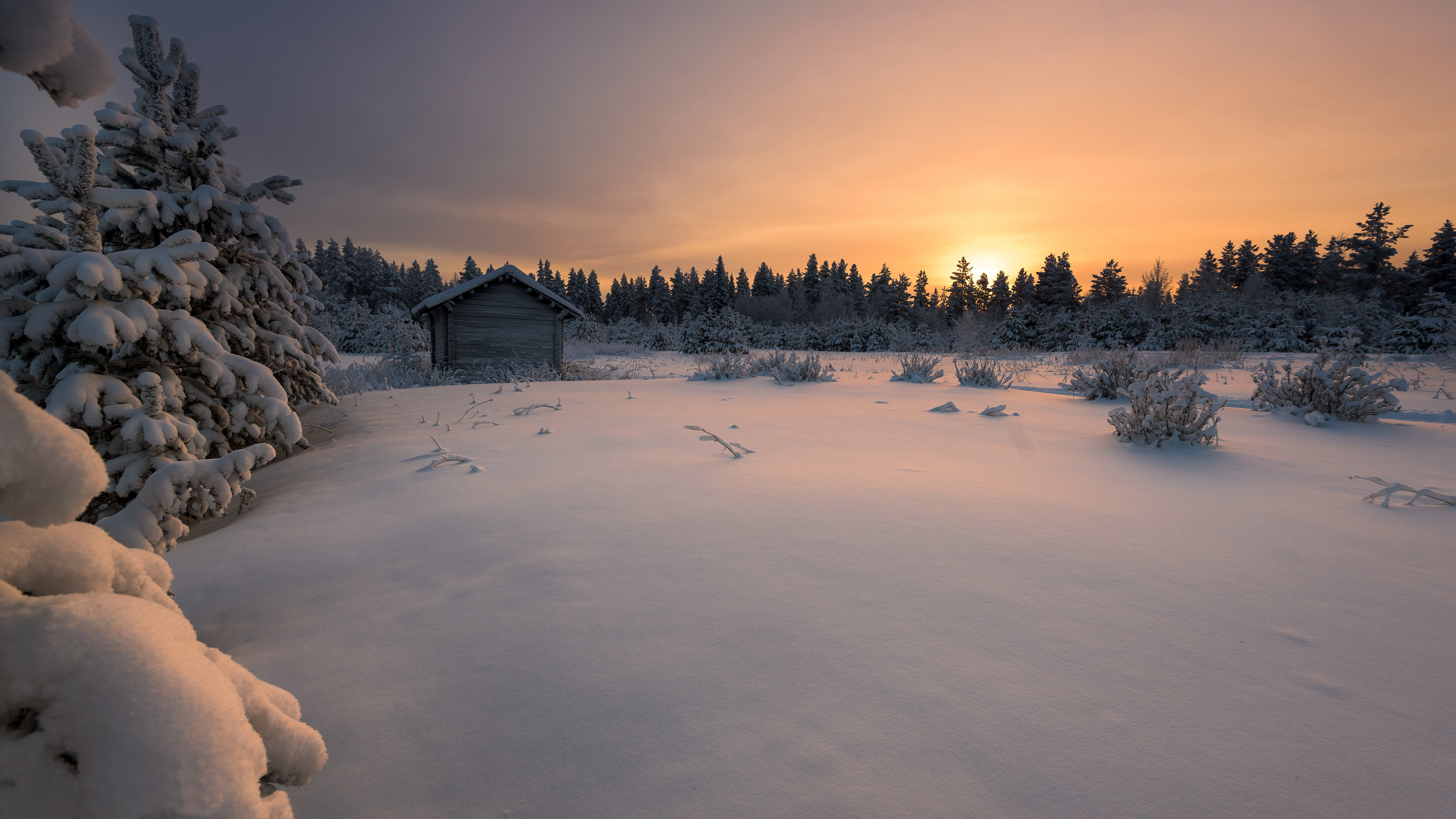 real-finland-winter